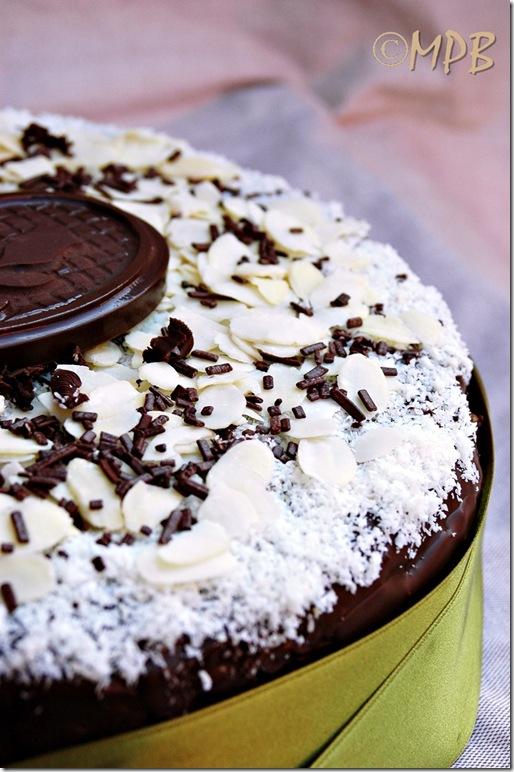 torta cioccococcolosa
