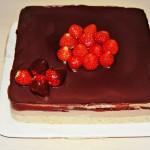 Torta fredda yogurt e cioccolato (senza cottura e senza uova)