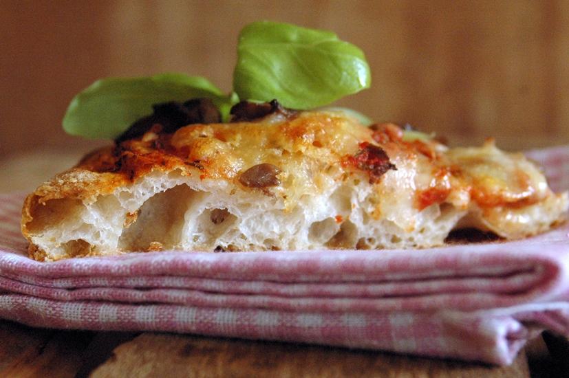 Ricetta pasta della pizza con lievito madre