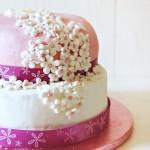 Una torta di compleanno a due piani per Michelle
