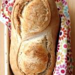 Pane al farro integrale con prefermento di pasta madre cotto in forno a legna